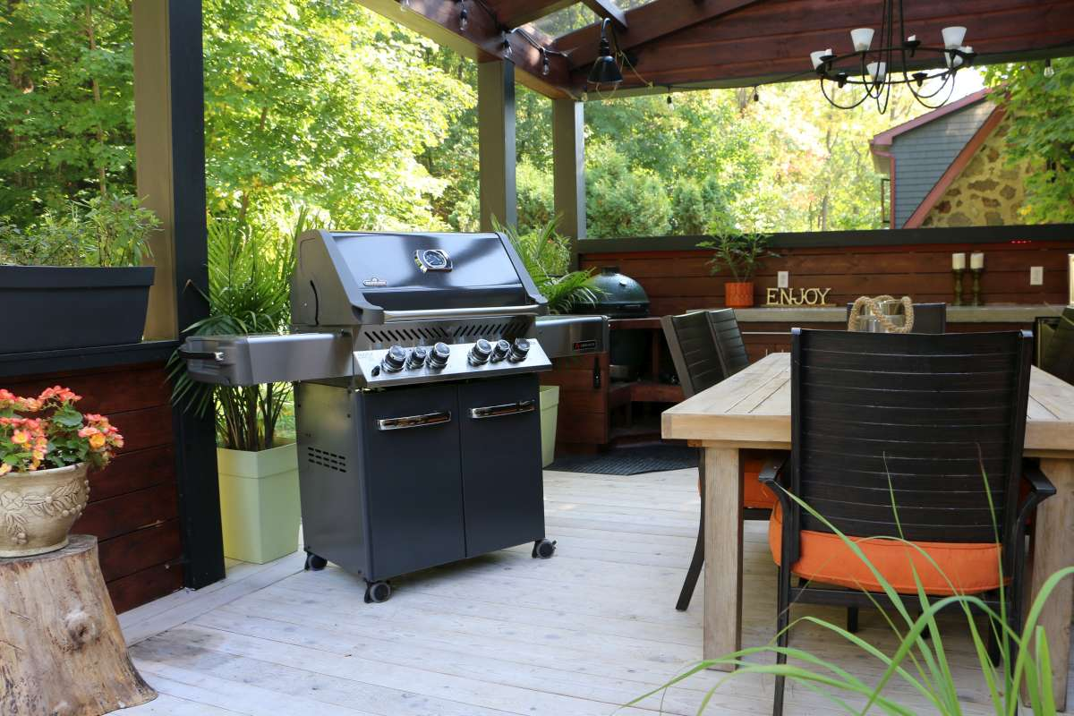 Ambiance 500 Gas Grill by Napoleon outdoor room – We Love Fire